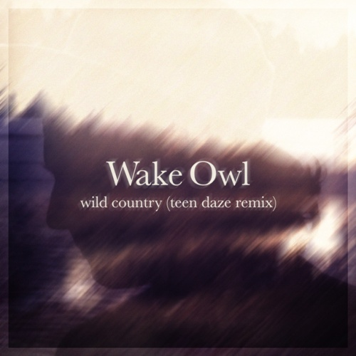 wake-owl-teen-daze-remix