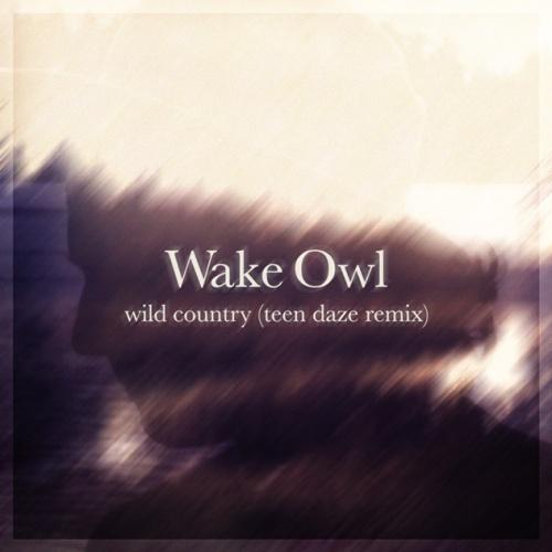 wake-owl-teen-daze-remix