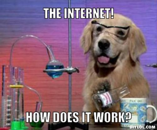 dog-scientist-meme-generator-the-internet-how-does-it-work-28dfaa