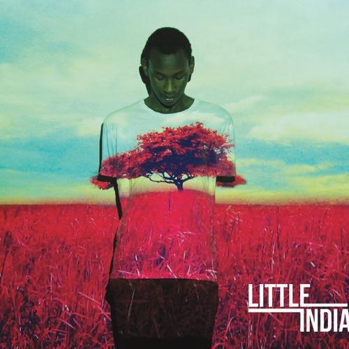 Little-india