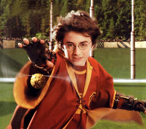 quidditch (1)